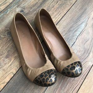 J.crew leopard cap toe ballet flat /8/